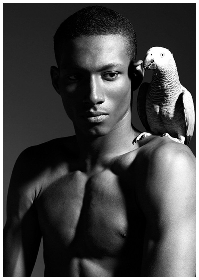 dalliance0 Genaro Perez by Steve Regento in Dalliance of Birds
